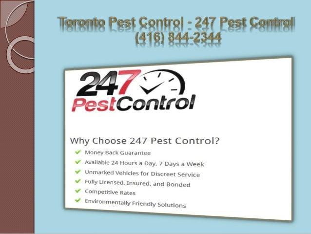 Bedbugs Toronto - 247 Pest Control (416) 844-2344