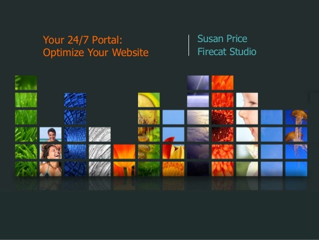 Your 24/7 Portal:       Susan PriceOptimize Your Website   Firecat Studio