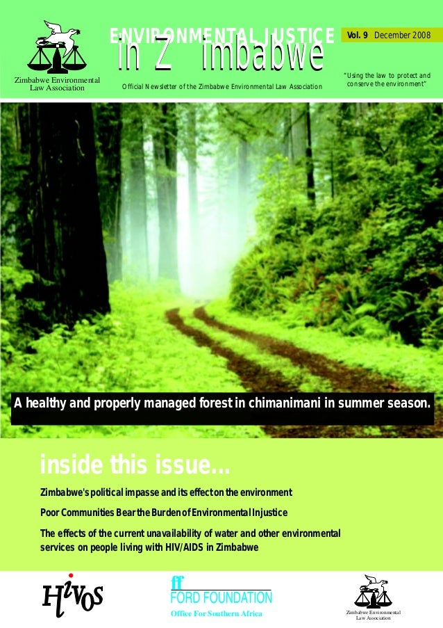 Environmental justice newsletter vol 9 a healthy and properly managed forest in chimanimani in summer season office for southern africa publicscrutiny Images