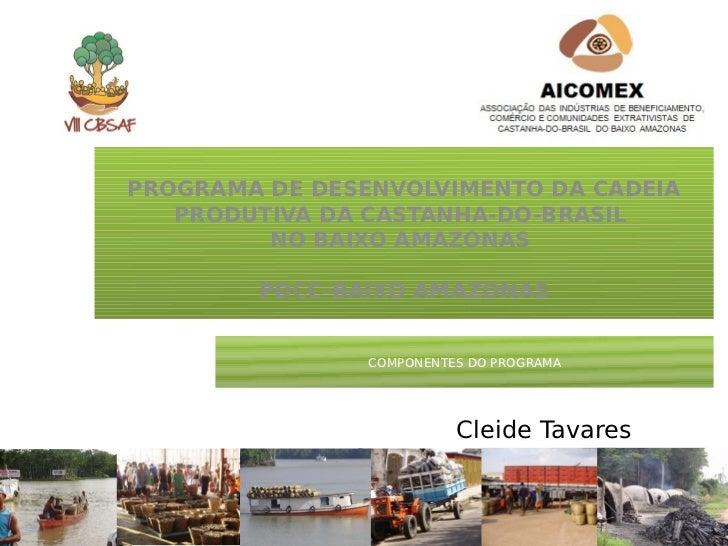 PROGRAMA DE DESENVOLVIMENTO DA CADEIA   PRODUTIVA DA CASTANHA-DO-BRASIL         NO BAIXO AMAZONAS        PDCC-BAIXO AMAZON...