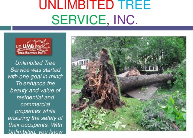 Unlimbited Tree Service was started with one goal in mind: To enhance the beauty and value of residential and commercial p...