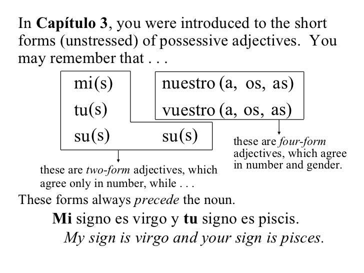 24 long form possessive adjectives and pronouns(no animation)