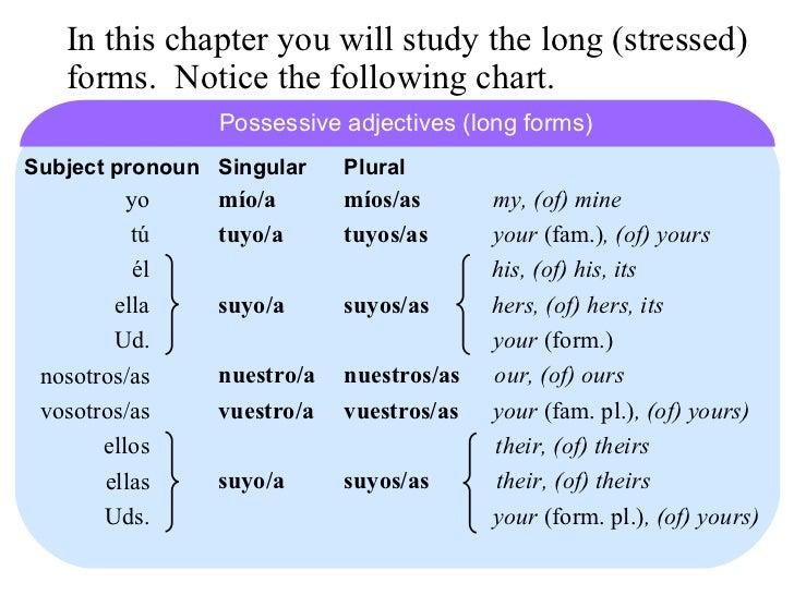 24 long form possessive adjectives and pronounsno animation – Possessive Adjectives in Spanish Worksheet
