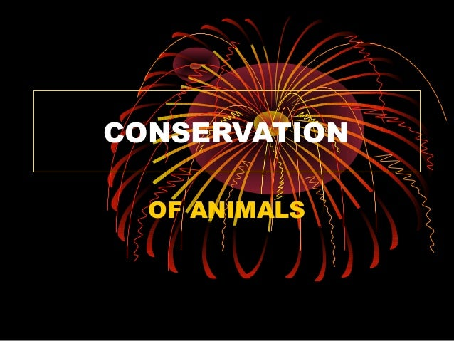 CONSERVATION  OF ANIMALS