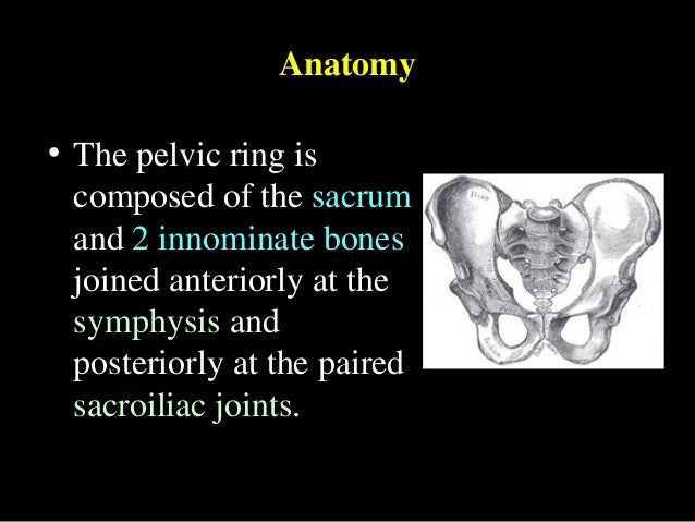 Pelvic ring anatomy