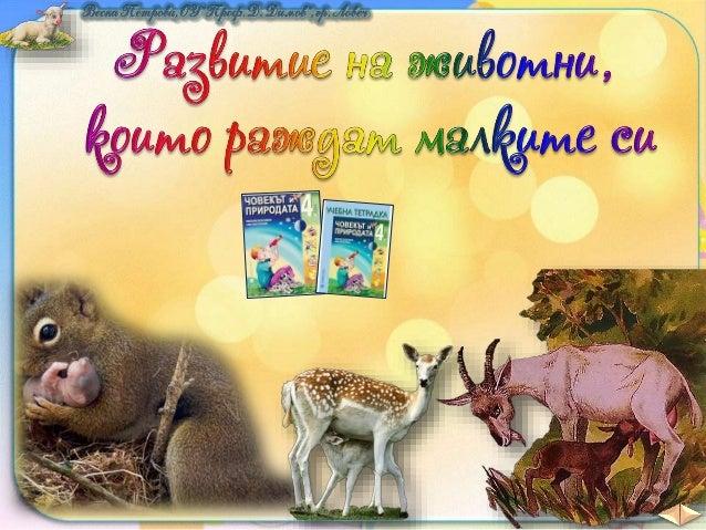 Разбира се, че това е само шега. Вие знаете, че: Някои животни се излюпват от яйца. Други животни раждат малките си.