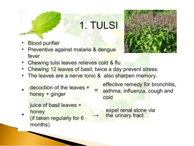tradational medicinal plants treating for stomach disorder Follow-up research on other traditional uses of medicinal plants, such as for the treatment of stomach ailments, sexually transmitted infections (stis), respiratory complaints etc have been given sufficient attention, but still lacking is attention given to the ethnobotanical plant use for skin diseases in remote geographical areas, such as.