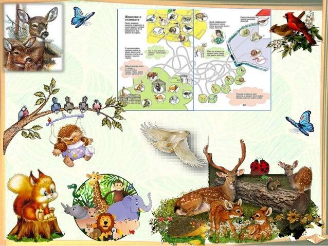 25. Диви животни. Животни в селищата - ОС, Анубис - В. П. Slide 2