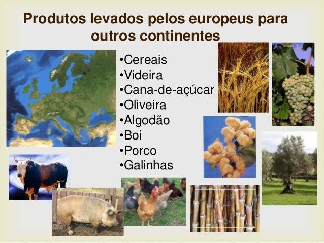 •Cereais •Videira •Cana-de-açúcar •Oliveira •Algodão •Boi •Porco •Galinhas Produtos levados pelos europeus para outros con...