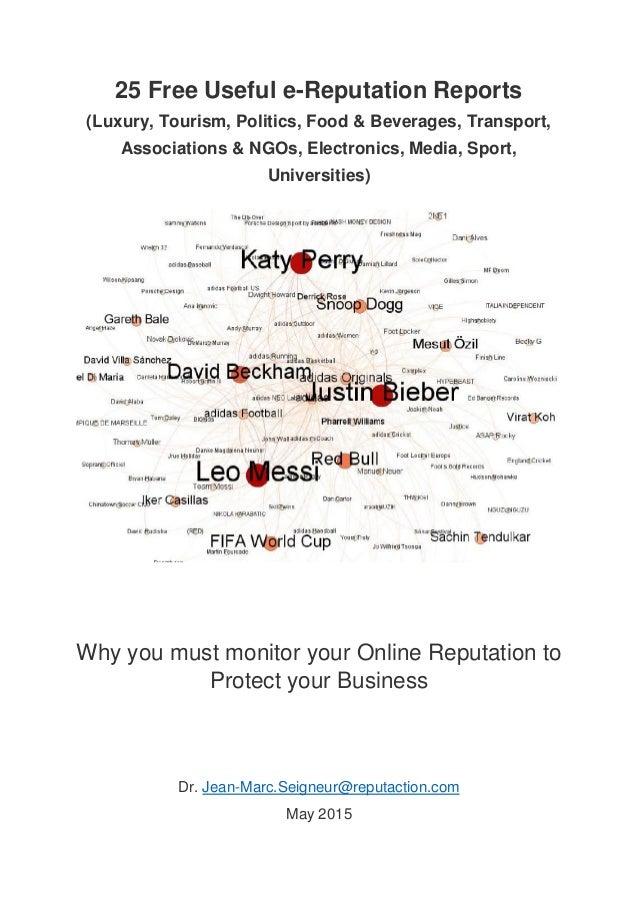 25 Free Useful e-Reputation Reports (Luxury, Tourism, Politics, Food & Beverages, Transport, Associations & NGOs, Electron...