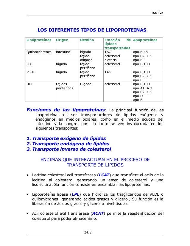 R.Silva LOS DIFERENTES TIPOS DE LIPOPROTEINAS Lipoproteínas Origen Destino Fracción de lípidos transportados Apoproteinas ...