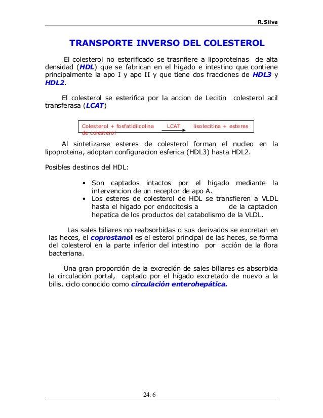 R.Silva TRANSPORTE INVERSO DEL COLESTEROL El colesterol no esterificado se trasnfiere a lipoproteinas de alta densidad (HD...
