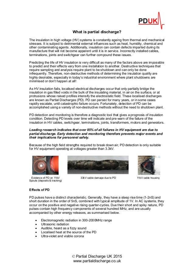 pdf Global Program Management