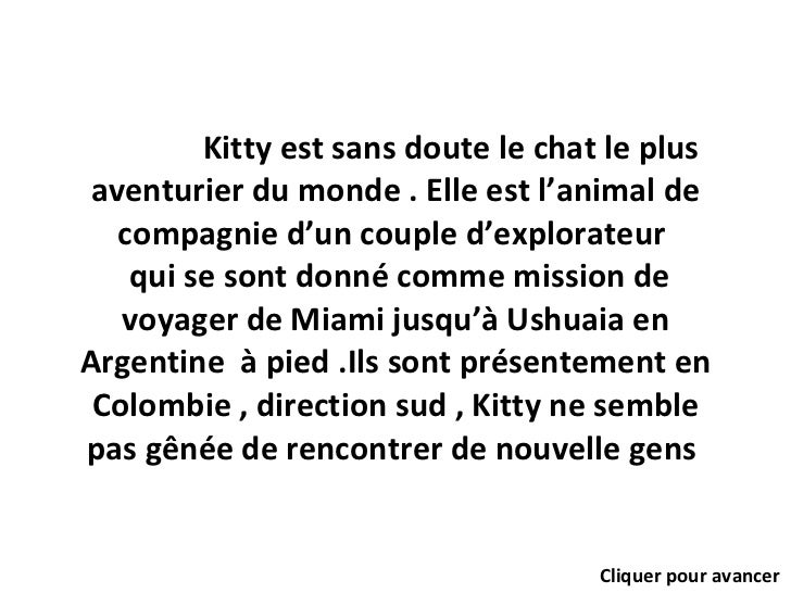 Kitty est sans doute le chat le plus aventurier du monde . Elle est l'animal de compagnie d'un couple d'explorateur   qui ...
