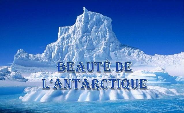 L'Antarctique est le continent situé au Pôle Sud et entouré par l'océan Austral. Sa surface est d 'environ 12,5 millions d...