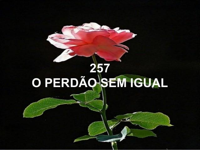 257 O PERDÃO SEM IGUAL