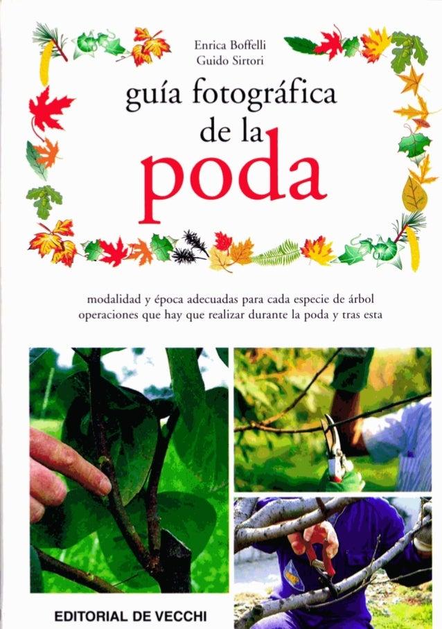 : Enrica Boffelli Guido Sirtori guía fotográfica modalidad y Cpoca adecuadas para cada especie de árbol operaciones que ha...