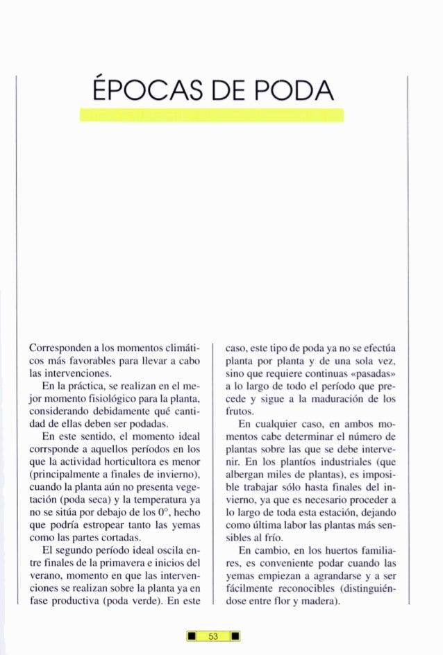 ÉPOCAS DE PODA Correspondena losmomentosclimáti- cos más favorables para llevar a cabo las intervenciones. En la práctica,...