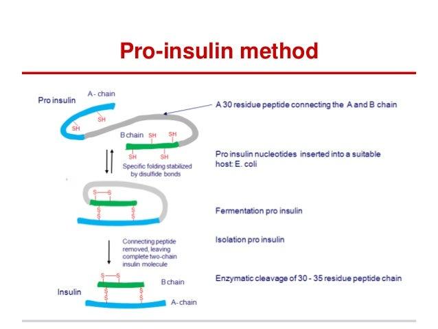 Biochemical Processes
