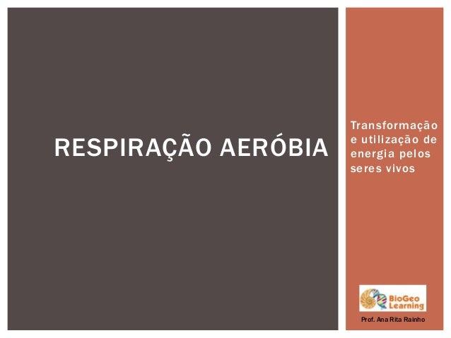 Transformaçãoe utilização deenergia pelosseres vivosRESPIRAÇÃO AERÓBIAProf. Ana Rita Rainho