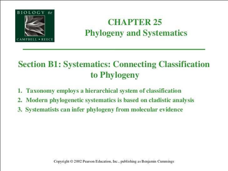taxonomy or systematic