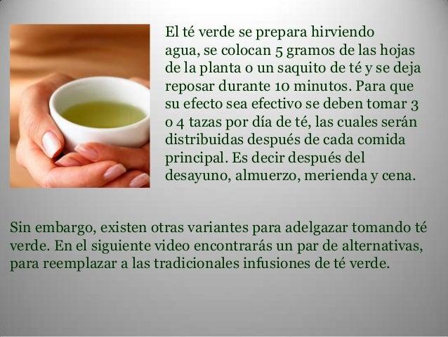 Como se debe tomar el te verde en capsulas - Perder Peso