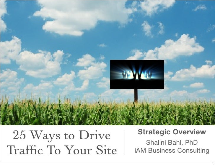 25 Ways to Drive      Strategic Overview                         Shalini Bahl, PhDTraffic To Your Site   iAM Business Consu...