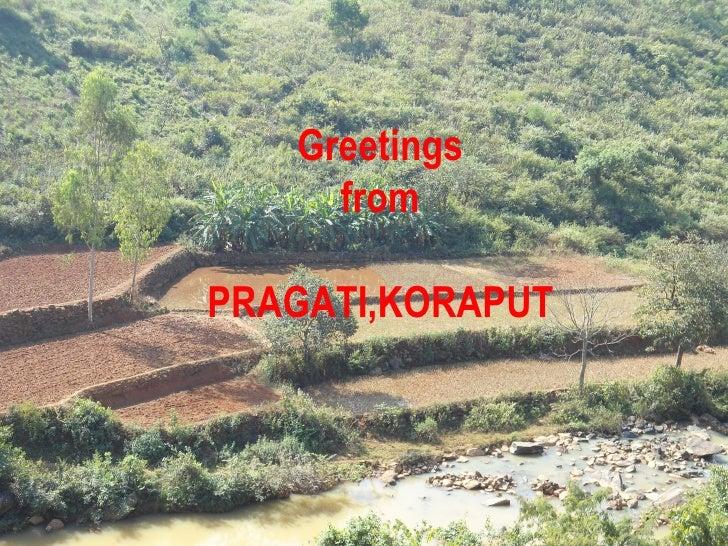 Greetings     fromPRAGATI,KORAPUT