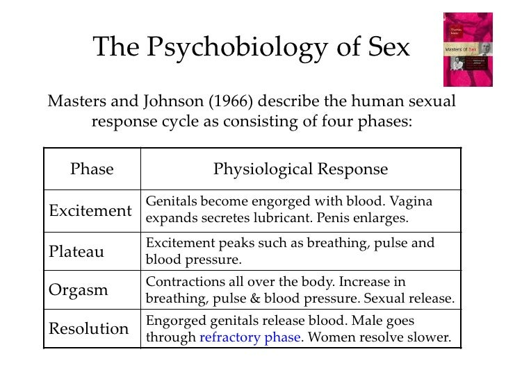 Human sexual response cycle ppt