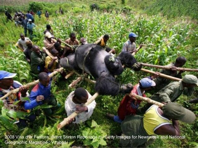 2008 Visa d'or News: Philip Blenkinsop : China Earthquake