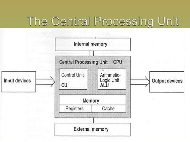 the central processing unit essay Essay the central processing unit microprocessors, also called central processing units (cpus), are frequently described as the brains of a computer.
