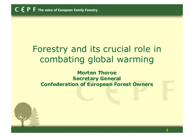 1 Forestry and its crucial role in combating global warming Morten Thoroe Secretary General Confederation of European Fore...
