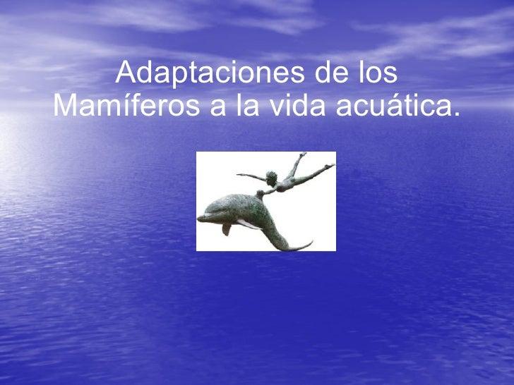 Adaptaciones de los Mamíferos a la vida acuática.
