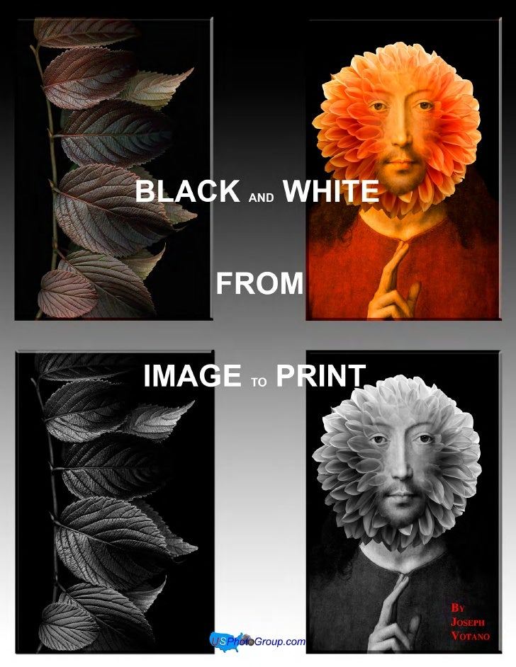 B&W From Image to Print                                                       Table of Contents        I.    Introduction ...