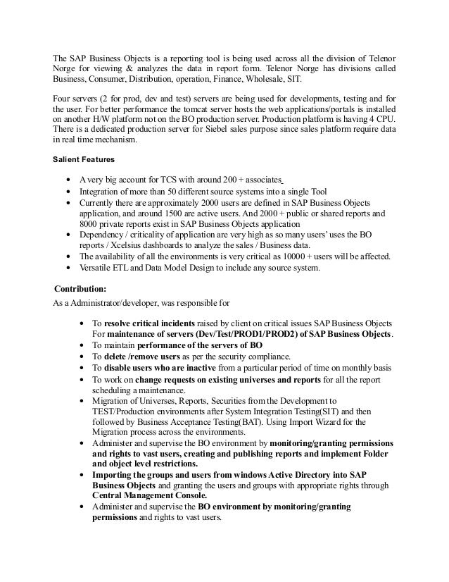 business object resume