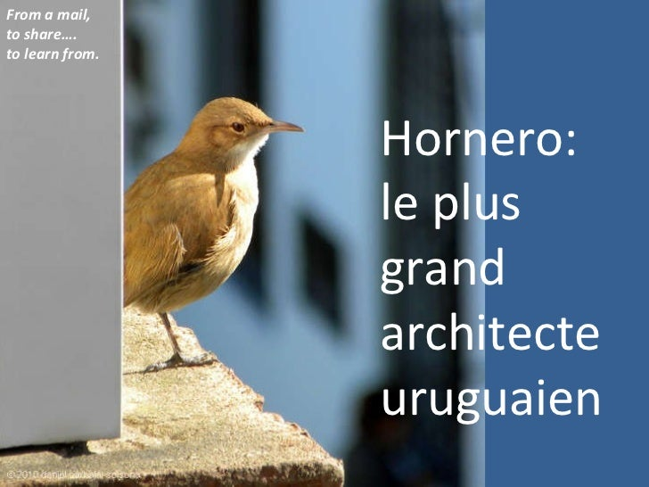 Hornero: le plus grand architecte uruguaien From a mail, to share…. to learn from.