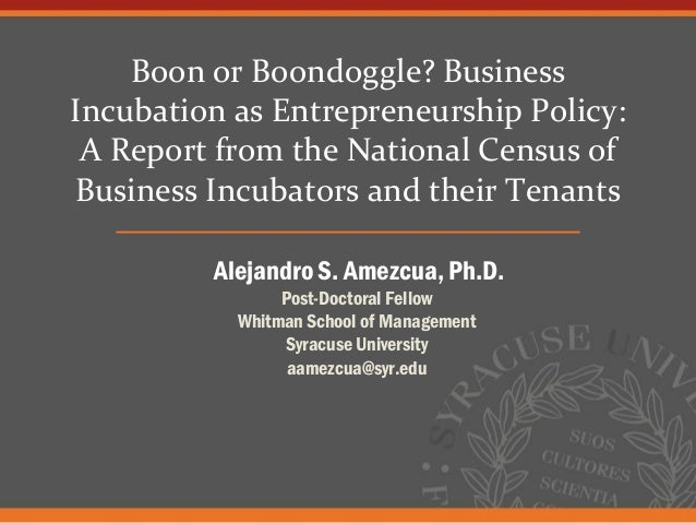 Boon or Boondoggle? BusinessIncubation as Entrepreneurship Policy: A Report from the National Census ofBusiness Incubators...