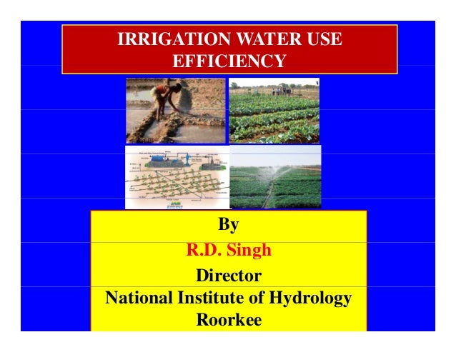 IRRIGATION WATER USE EFFICIENCYEFFICIENCY By R.D. Singh Director National Institute of Hydrology Roorkee