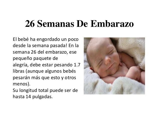 26 semanas de embarazo c mo se encuentra el beb tras 26 - El baul de tu bebe ...