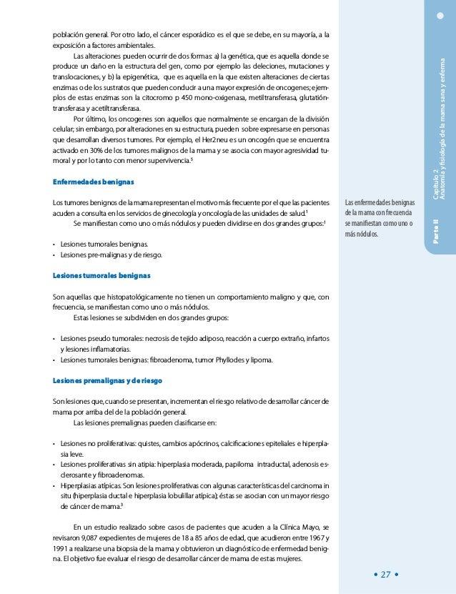 Encantador Anatomía Y Fisiología Del Cáncer Fotos - Anatomía de Las ...