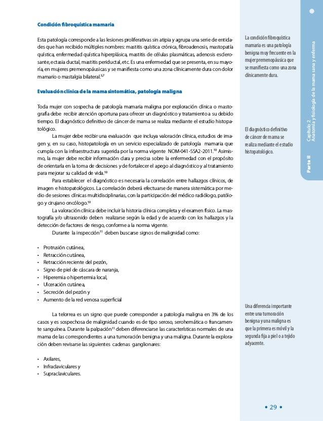 Magnífico La Anatomía Y La Fisiología Del Cáncer De Mama Composición ...