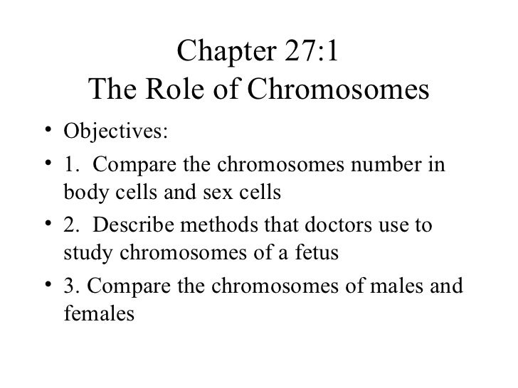 Chapter 27:1    The Role of Chromosomes• Objectives:• 1. Compare the chromosomes number in  body cells and sex cells• 2. D...