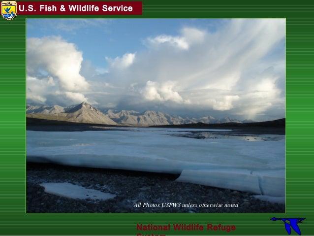 U.S. Fish & Wildlife Service National Wildlife Refuge All Photos USFWS unless otherwise noted