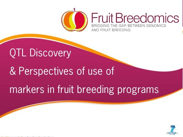 PBA workshop, MSU JUNE' 10 1 QTL Discovery & Perspectives of use of markers in fruit breeding programs