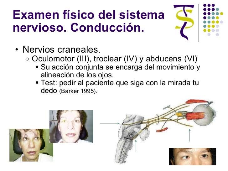 Examen físico del sistema nervioso. Conducción. <ul><ul><li>Nervios craneales. </li></ul></ul><ul><ul><ul><li>Oculomotor (...