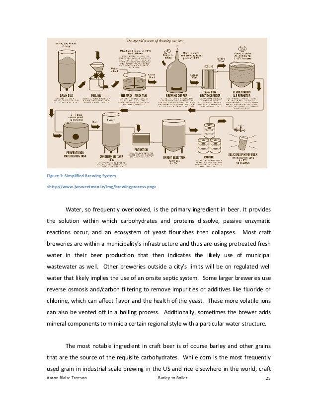 Boiler thesis