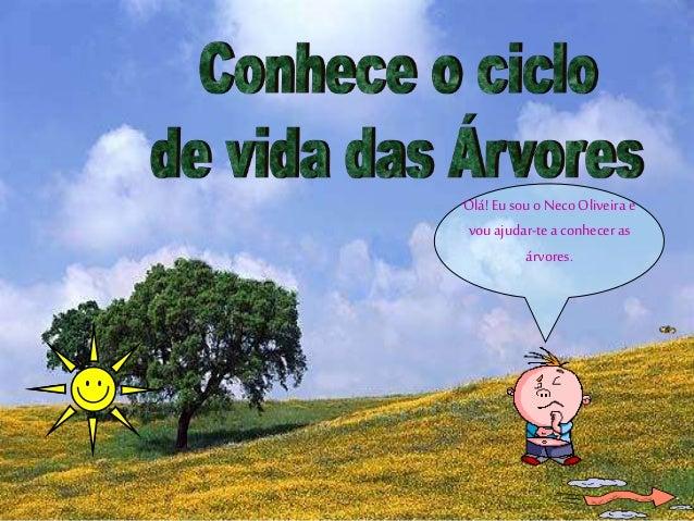 Olá!Eusouo Neco Oliveira e vou ajudar-tea conhecer as árvores.
