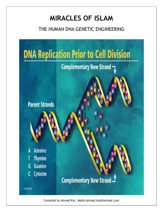 MIRACLES OF ISLAMTHE HUMAN DNA GENETIC ENGINEERING  Compiled by Ahmad KAJ. Mailto ahmad.kaj@hotmail.com