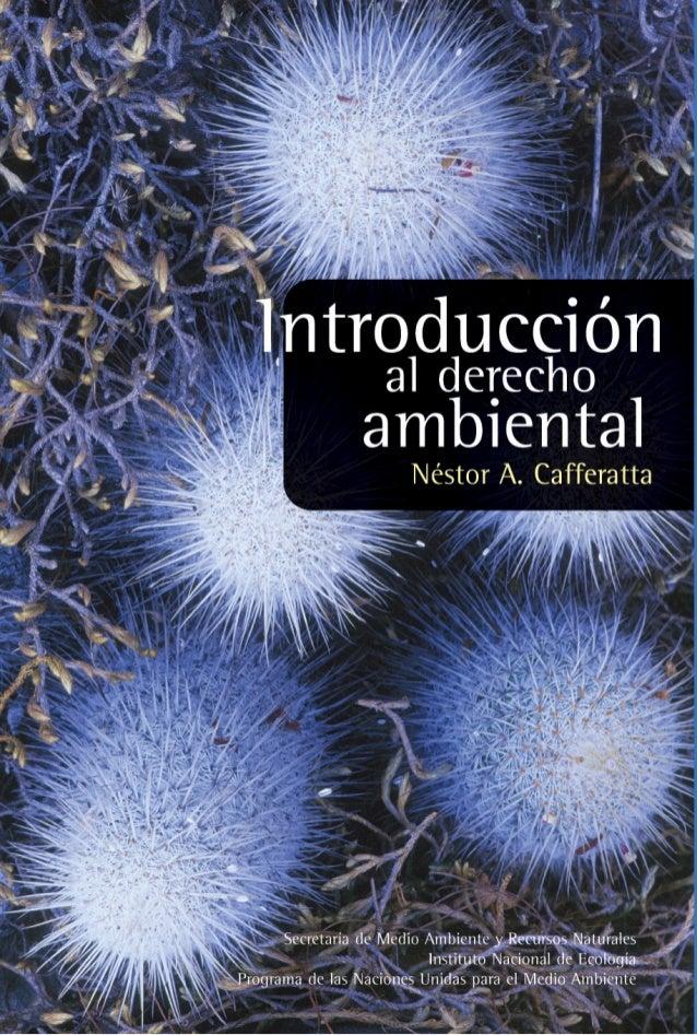 I NTRODUCCIÓN   ALDERECHO AMBIENTAL