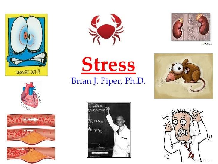 StressBrian J. Piper, Ph.D.